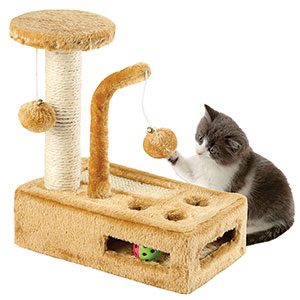 Regal pet cat play